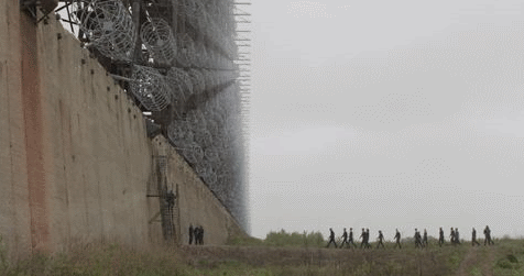 Patrolling the wall